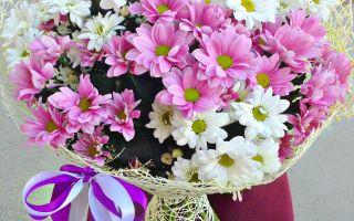 Хризантема в букете: очарование круглый год с доставкой на дом