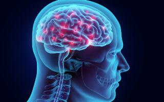 Кортексин — что это и как использовать