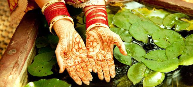 Аюрведа — это монументальный вклад Индии в мир
