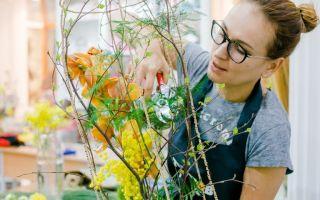 Какие тренды используют флористы в работе