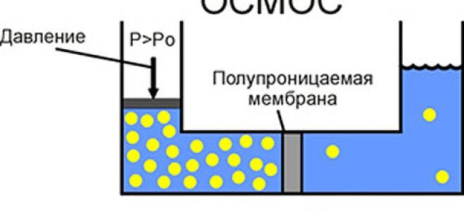 Как работают фильтры обратного осмоса для очистки воды
