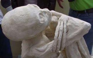 Загадка «инопланетной» мумии