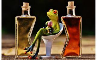 Опасность алкоголизма: быстрый выход из запоя и как не вернуться к пагубной привычке