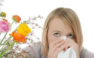 Понятие аллергии