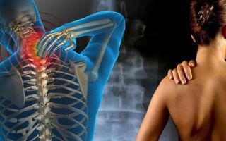 Суставно-мышечная диагностика поясничного отдела позвоночника